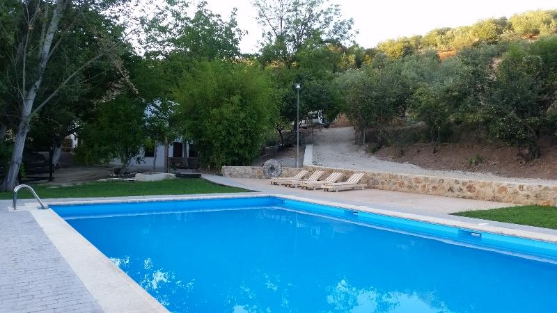 Pool 16x8 m