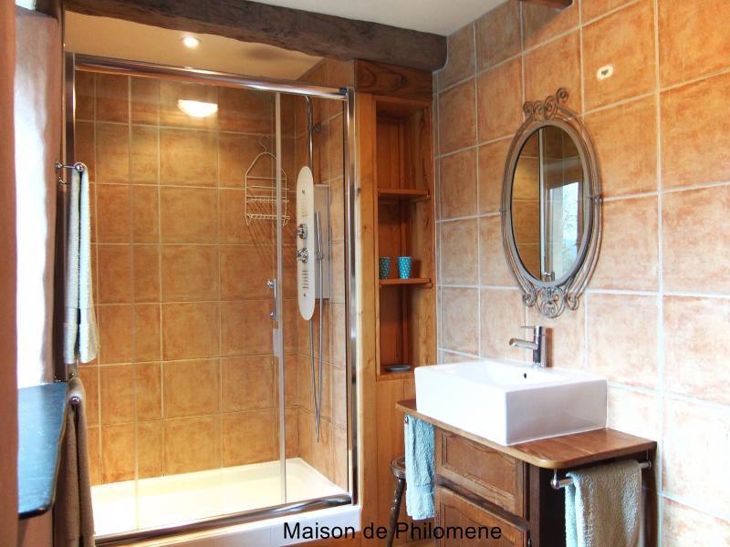 Chambre Libellule's en-suite with double hydro massage shower.