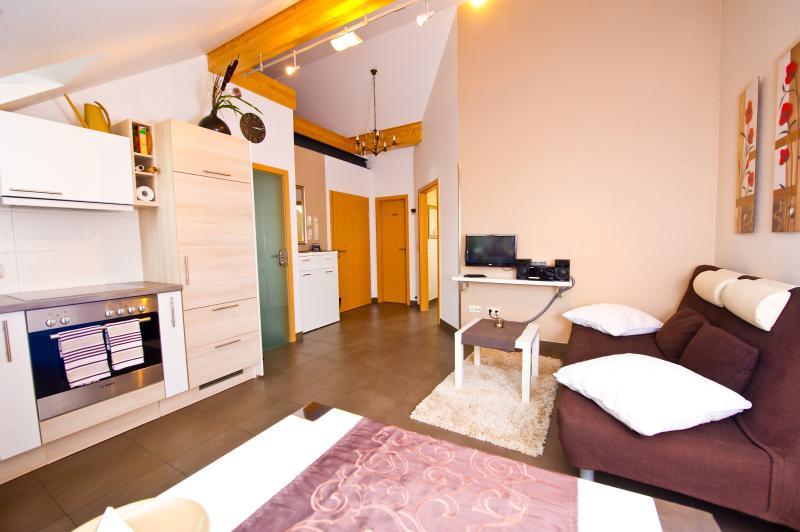 Salon avec un autre canapé-lit, coin repas, cuisine