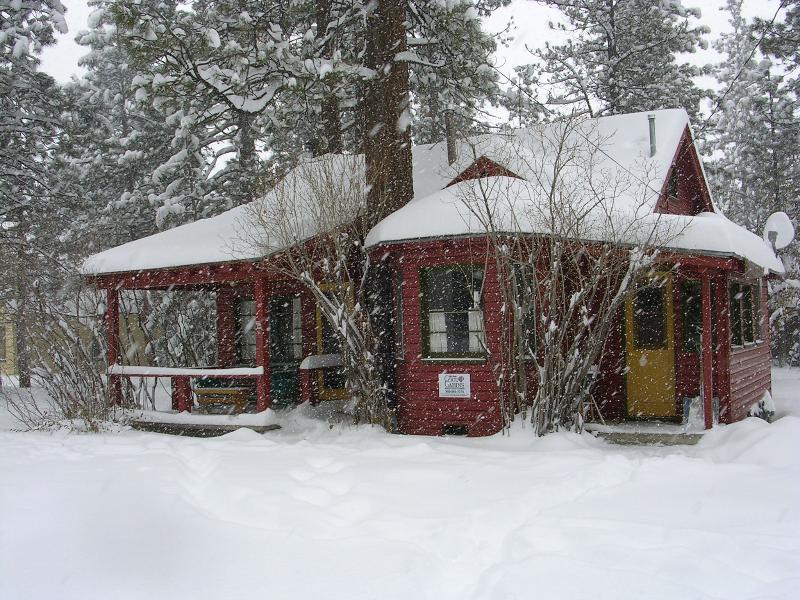 Adorable vintage log cabin in snowfall...On large secure lot+off street parking.