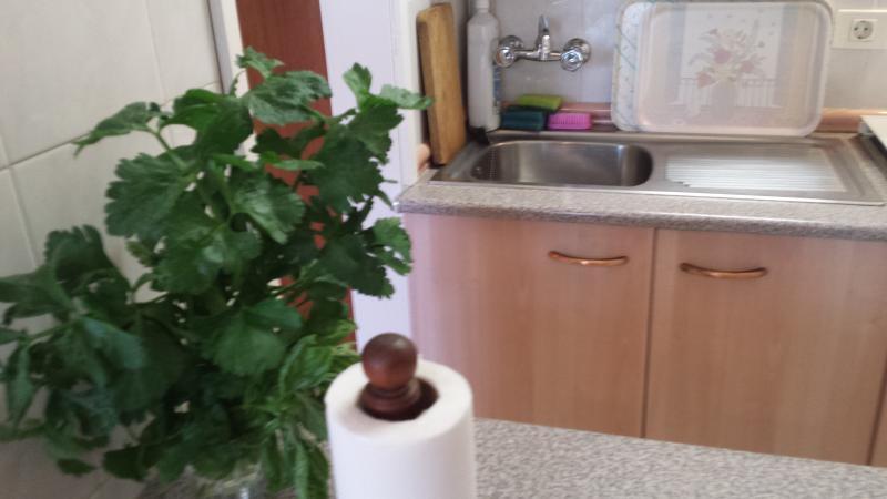 fresh herbs in the kitchen, mmmm...
