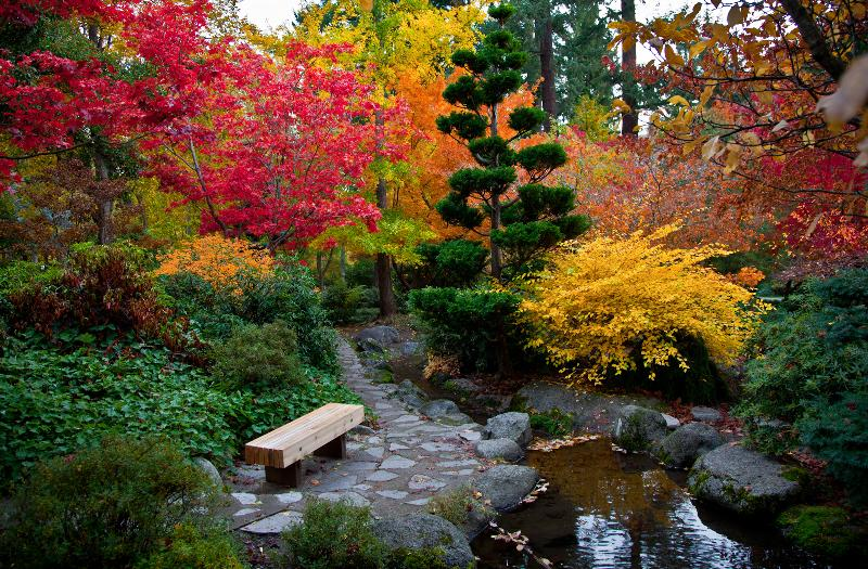 Enjoy Ashland's Lithia Park. Perfect For an Easy Stroll or an Afternoon Swim/Picnic. Hiking Trails!