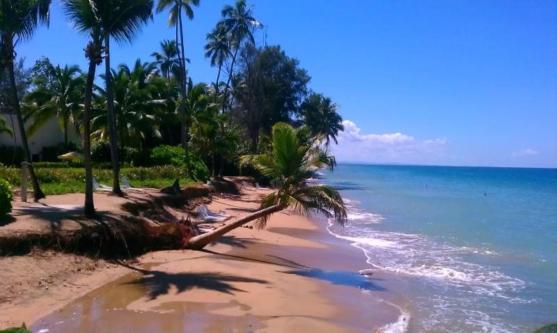 Costa de rincón