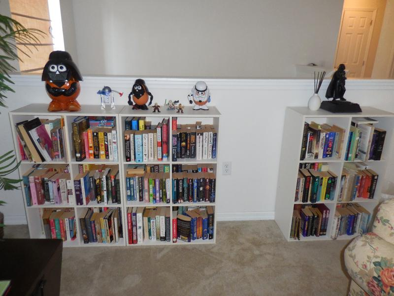 Books and games in upstairs Den