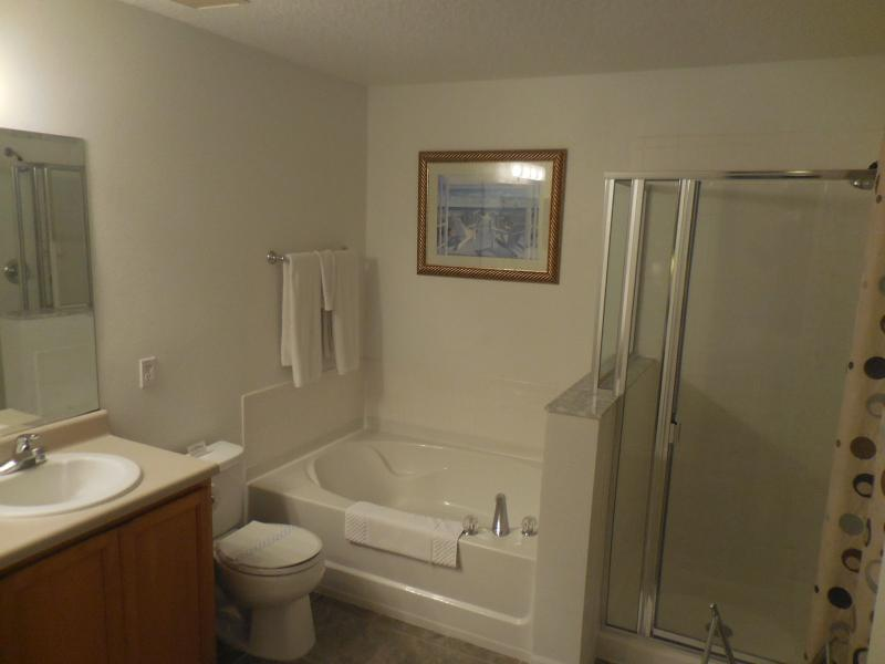 King master en suite with full bath and shower