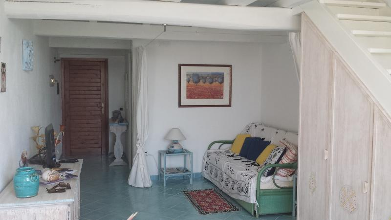 Access to the apartment in the big living room with sofa bed and separè