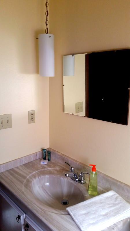 Bathroom with Shower and Pull down Rain showerhead