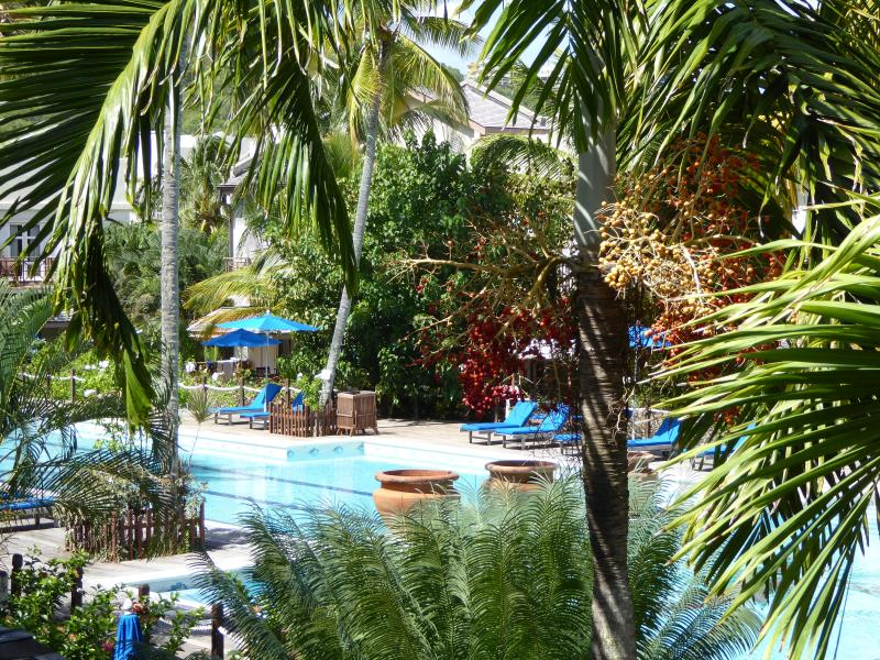 view from the living room of the 35 metre adult swimming pool