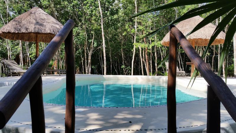 Piscine & jardin. Pool & Garden.