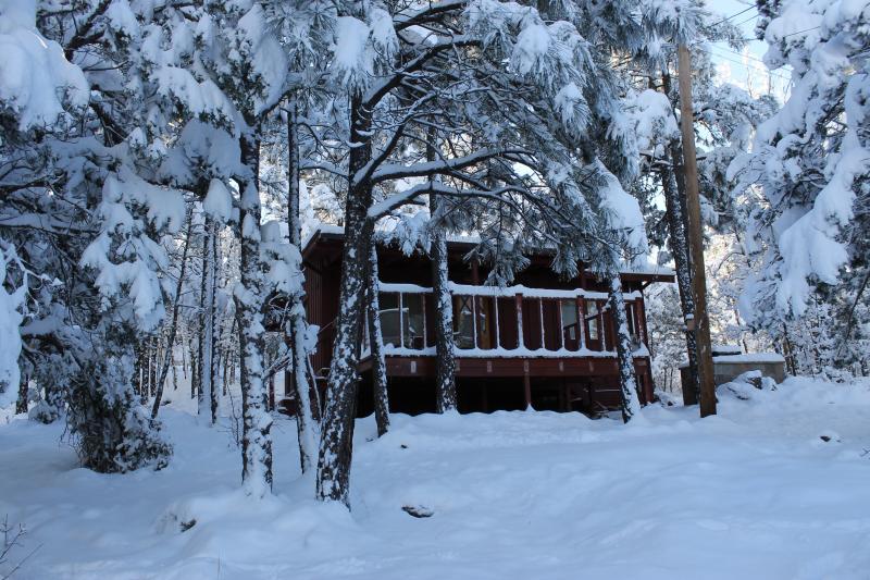 Romantic and Cozy Cabin In Pinetop!, location de vacances à Pinetop-Lakeside