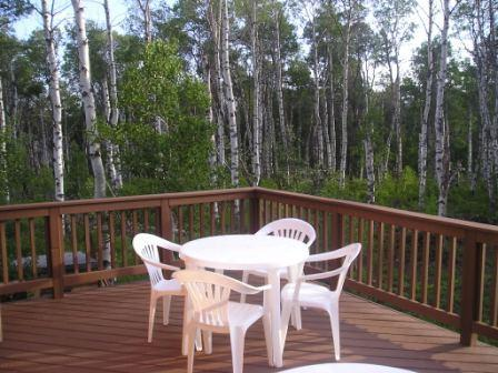 The upper deck overlooks the aspen forest