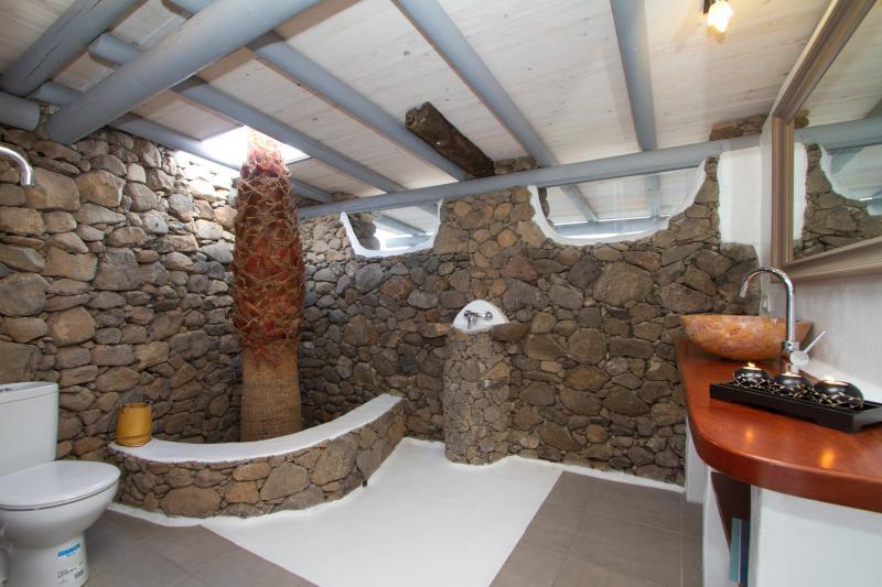 Salle de douche avec palmier !