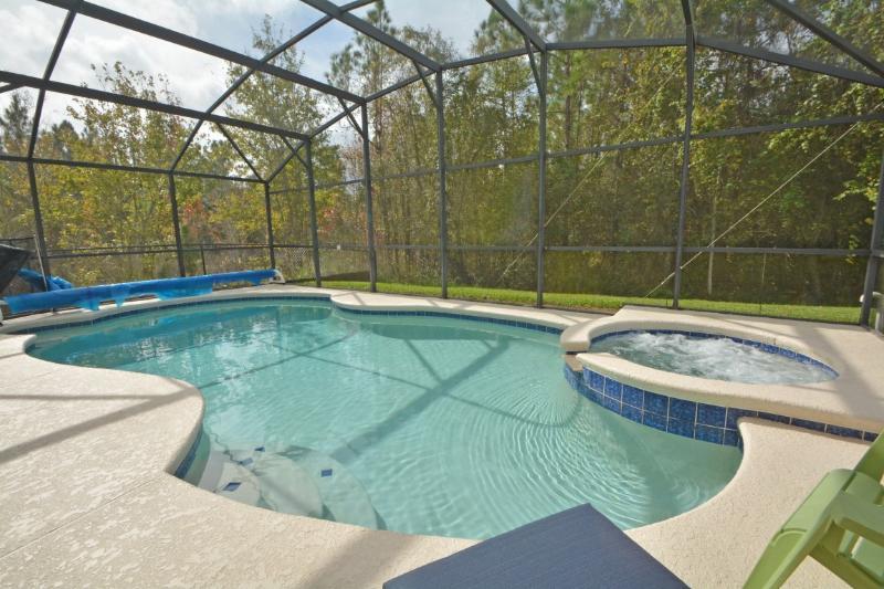 Piscina / vasca idromassaggio. Conservazione dietro e a sinistra della casa