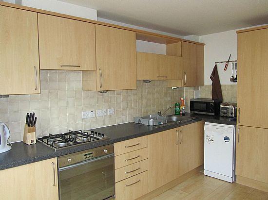 Cucina ben attrezzata con lavastoviglie e lavatrice.