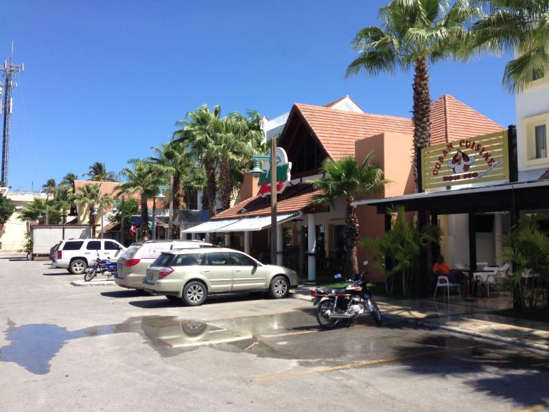 shopping plaza walking distance