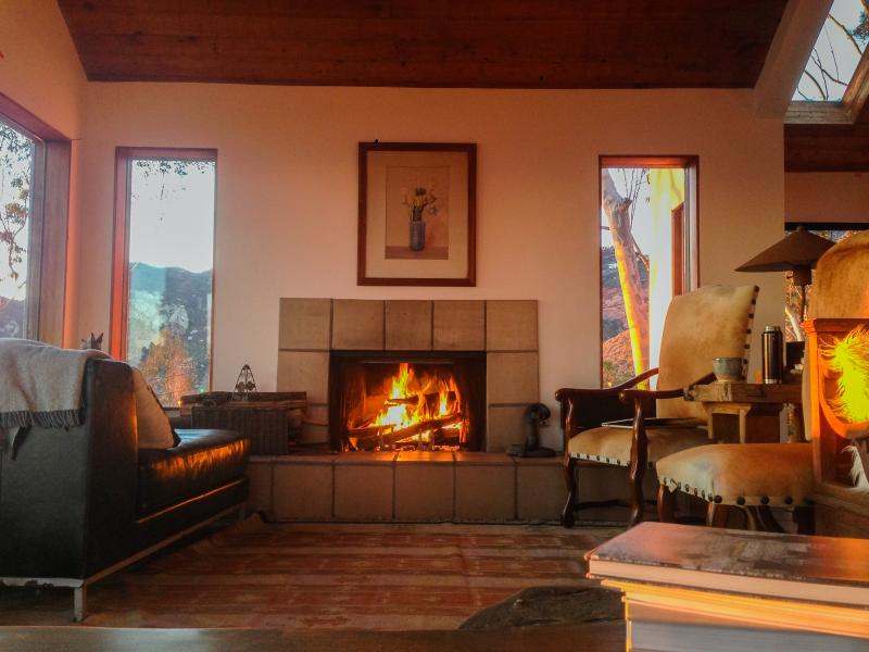 For Loungers: living room with fireplace, chez lounge, couch, chairs, art books, carpet.