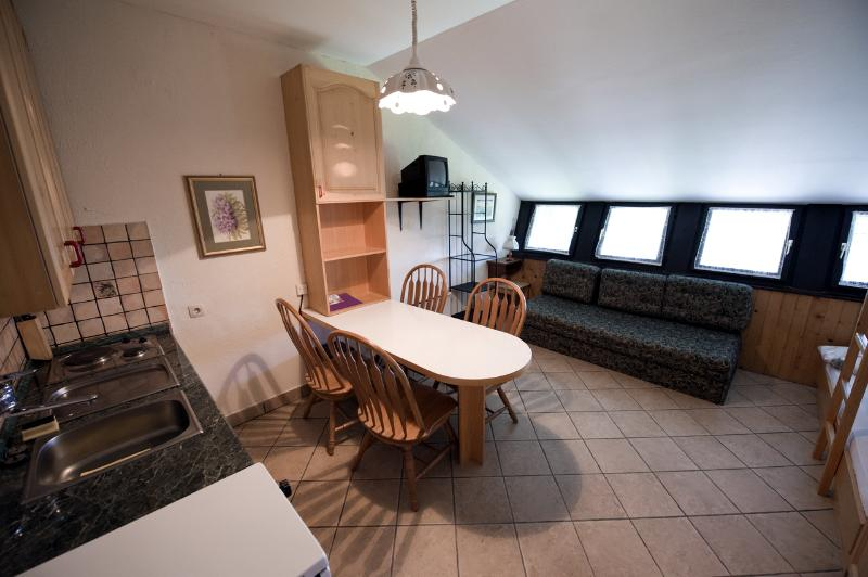 Apartment Gaber Rogla, holiday rental in Eibiswald