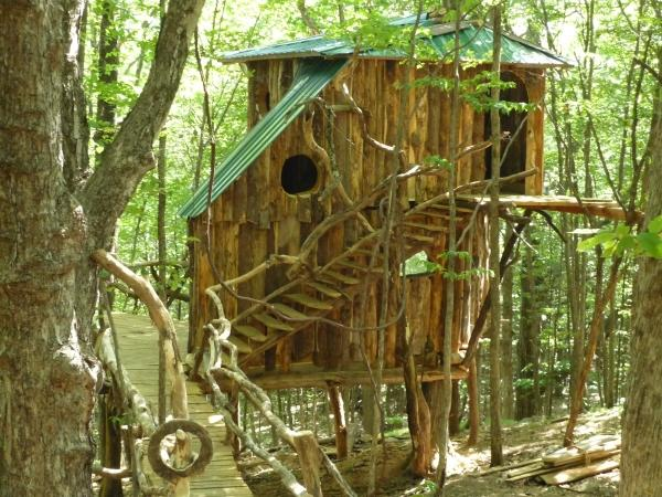 Mid summer, treehouse in the woods
