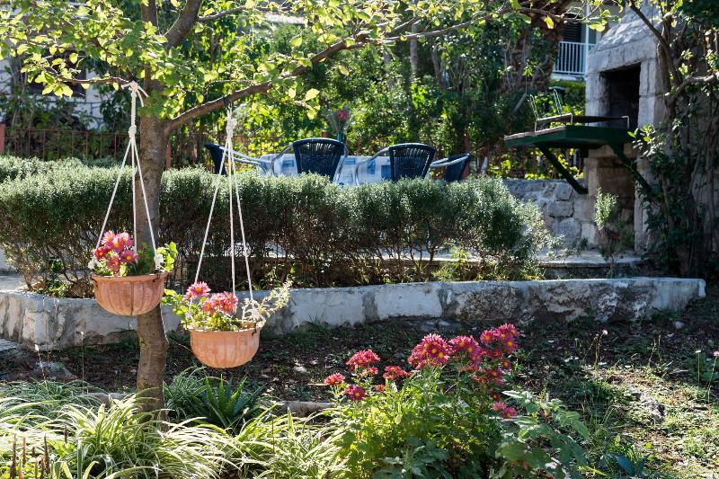 jardin (maison et environs)