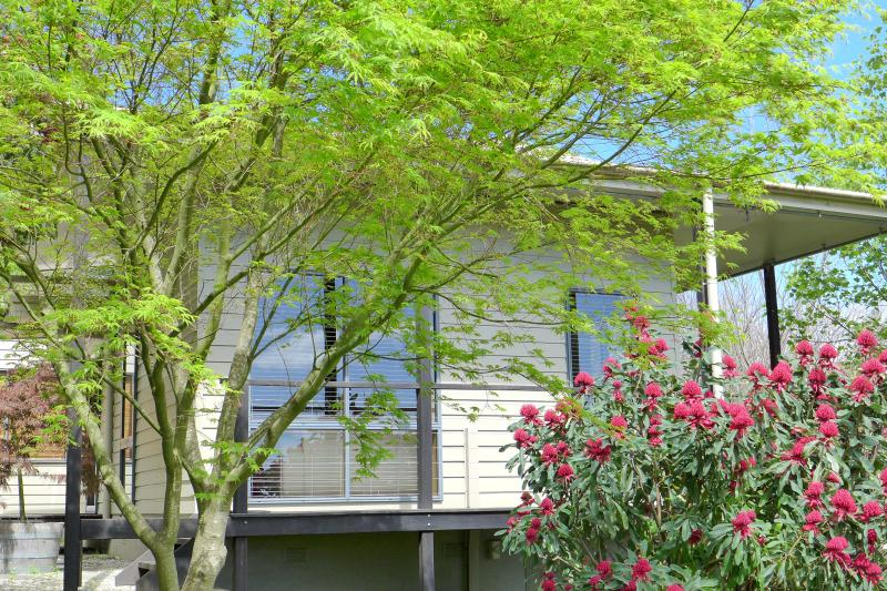 Silver Wattle cottage