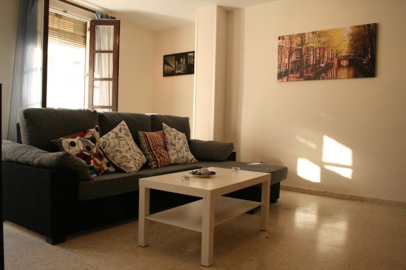 [96] Huge 3 bedrooms flat in good location, holiday rental in Almaden de la Plata