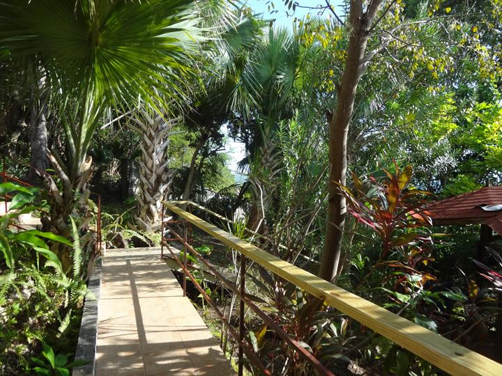 Bridge from guest suite to the side garden