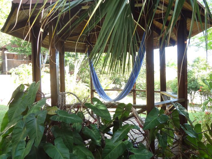 Garden gazebo with hammock