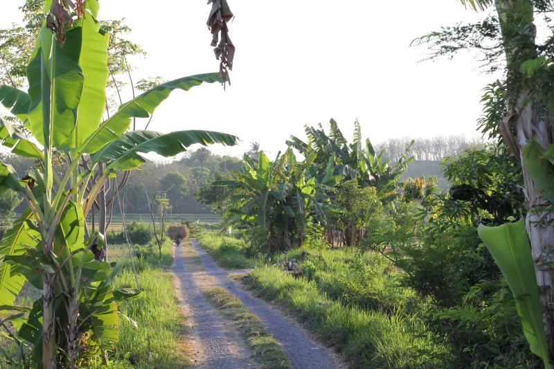 Road to Kundalini