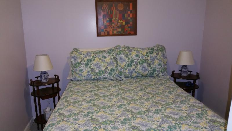 1 bedroom Garden apt near harvard/MIT, alquiler de vacaciones en Boston