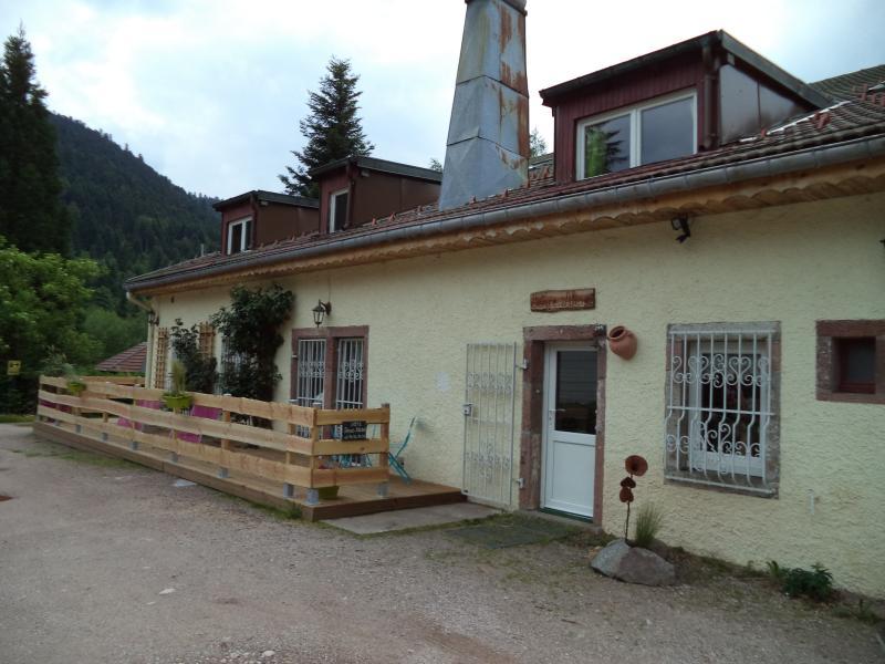 location 4 etoiles pour 19 personnes, vacation rental in La Bresse