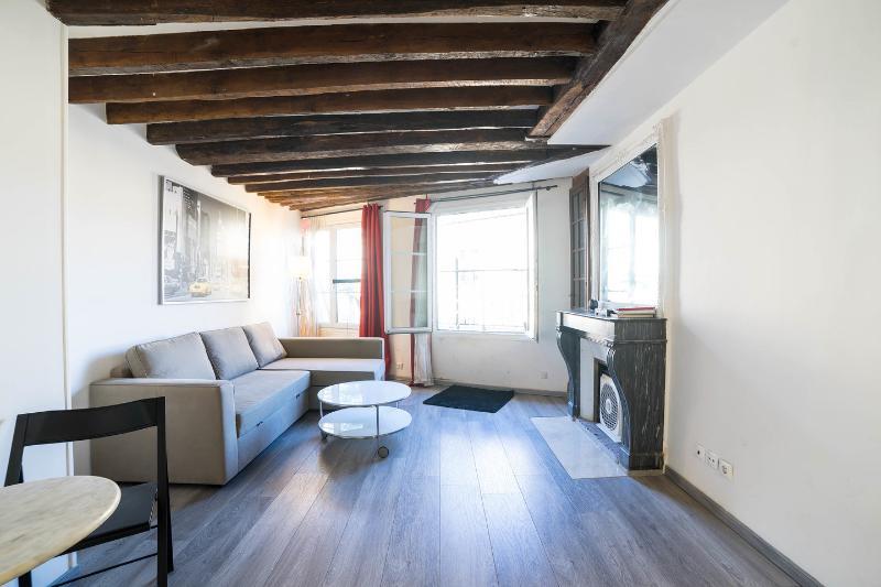 Beautiful studio 36 m2 + beautiful sunny terrace, vacation rental in Malakoff