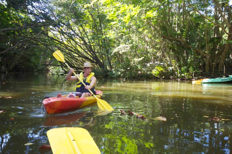 Kayak in the nature reserve just 15 minutes from Palmas.