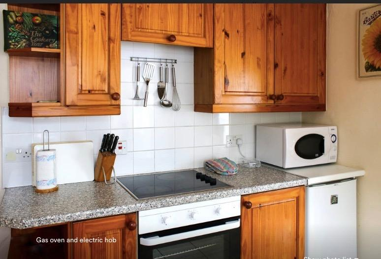 electric hob/gas oven , fridge  and microwave oven