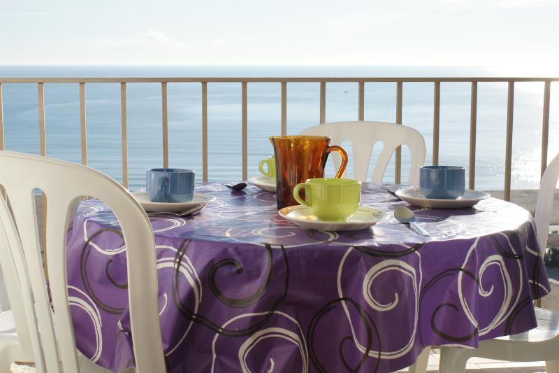 APARTAMENTO FRENTE AL MAR. ESPECTACULARES VISTAS, vacation rental in Empuriabrava