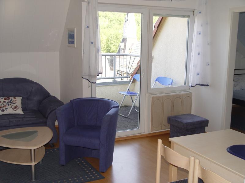 Salon / salle à manger avec terrasse sur le toit