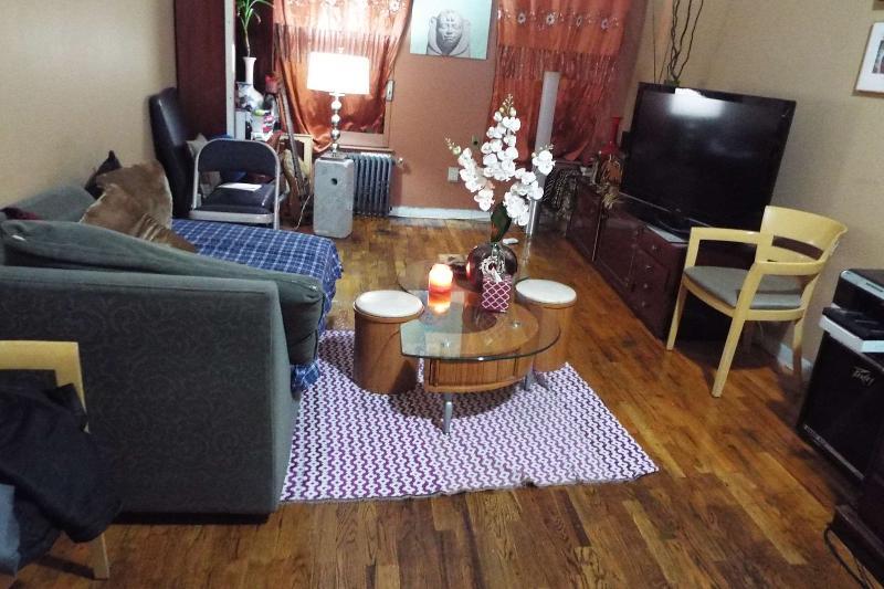 Large 1 Bedroom Apartment In Manhattan