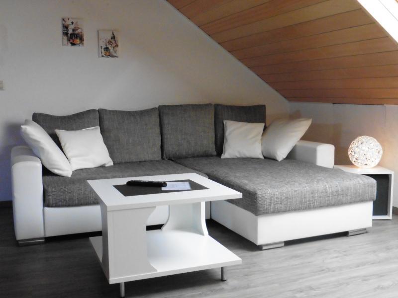 moderne 2 Zimmer Wohnung für 1-3 Personen/2 Betten, holiday rental in Rastatt