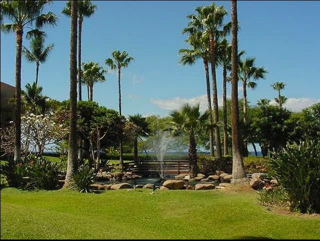 Beautiful tropical gardens and pools with fountains in the extensive grounds