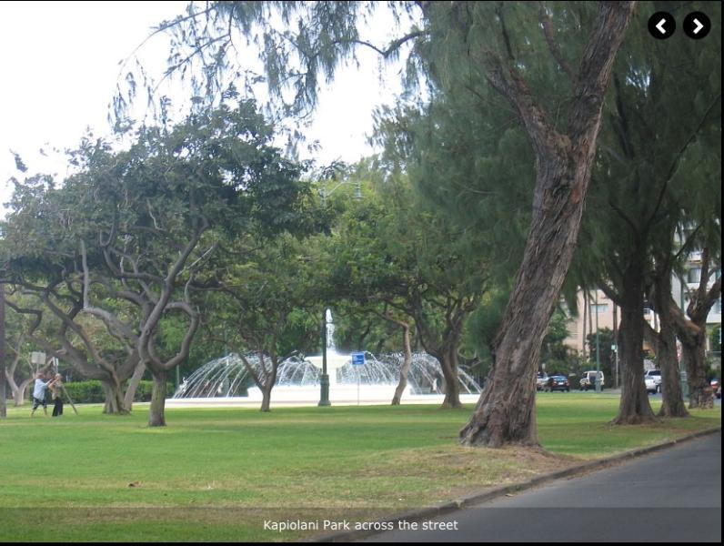 Kapiolani Park