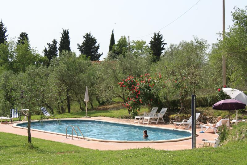Pnoramic Apartment 4 persons in the Tuscan hills, holiday rental in Certaldo