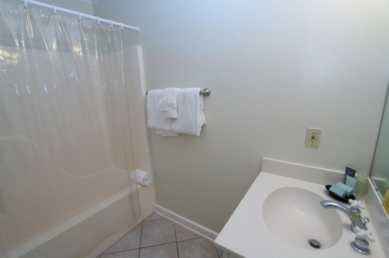 Queen Master Bath with Tub / Shower