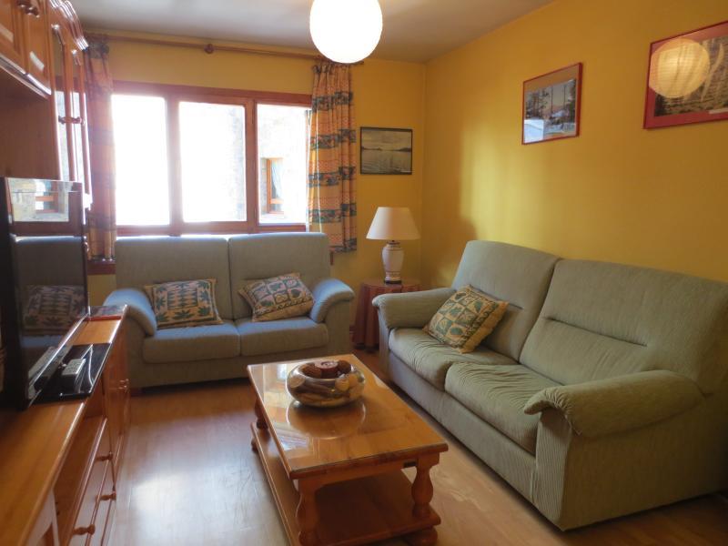 Apartamento amplio y cómodo en plaza peatonal., holiday rental in Sallent de Gallego