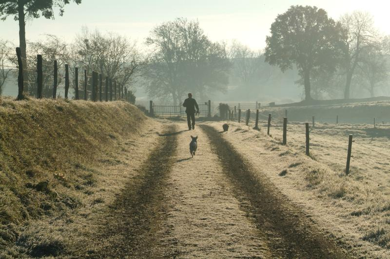 Enjoy a leisurely stroll down the lane-you might spot deer!