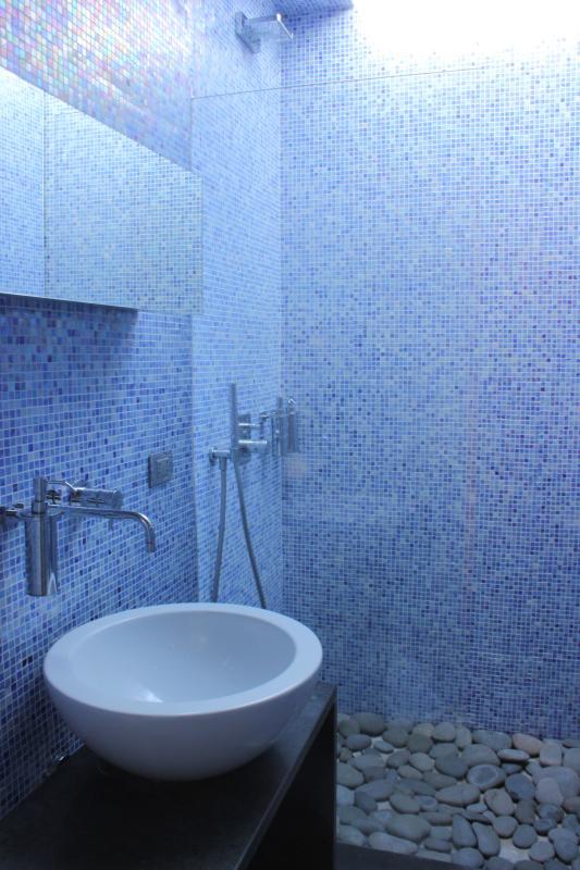 Il servizio igienico con la doccia a cascata.