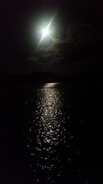 Månsken i natten