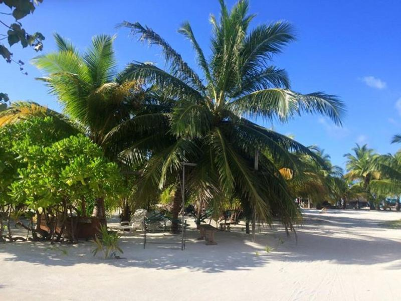 Thulhaadhoo Island