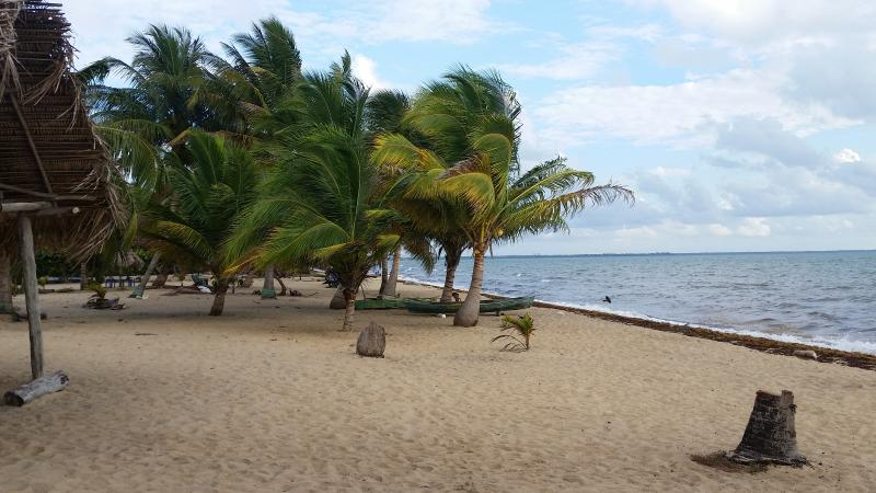 Relax on the beach or under shade of a coconut tree