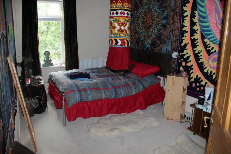 Funky cosy double bedroom with fast wifi & TV, kettle with free tea & coffee, own privacy.