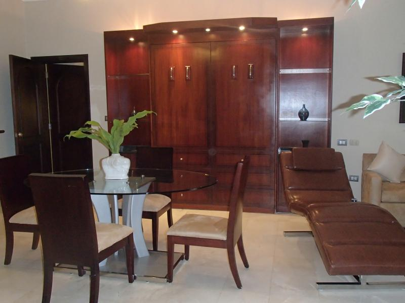 dining area - there's also a murphy bed located in the brown cabinets against the wall