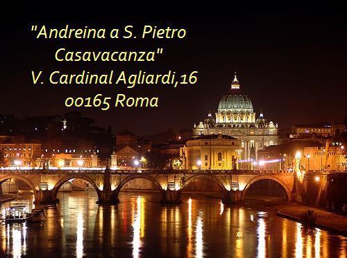 Panorama Roma di notte
